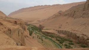 More desert.