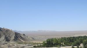 More of same. Wall. Desert.