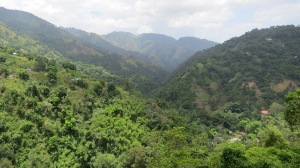 The view from Mount Edge.  The Blue Mountains of Jamaica.