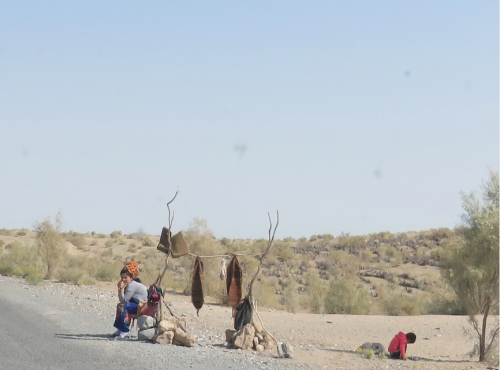 desert stall